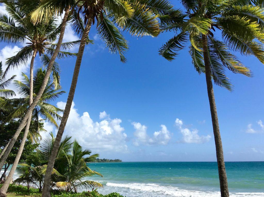 Weißer Sandstrand, Palmen, blaues Meerwasser, sonniger blauer Himmel, Brandung