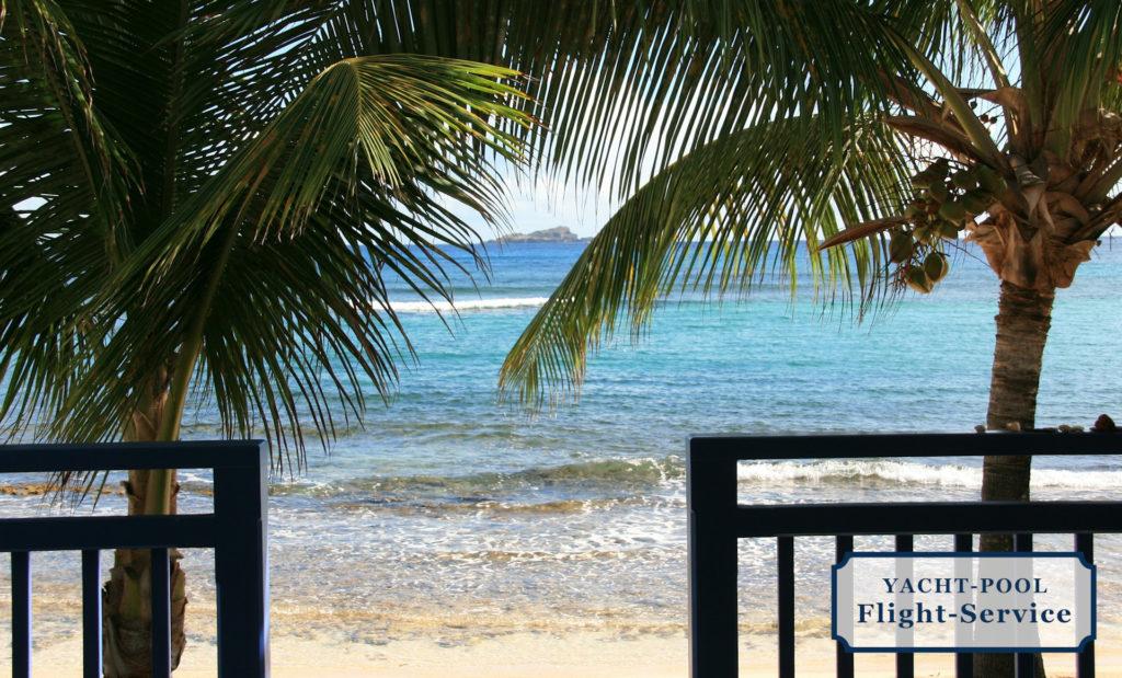 Flüge nach St. Barts in der Karibik. Kokospalmen im Vordergrund. Dahinter der weiße Sandstrand und das glasklare Meer.